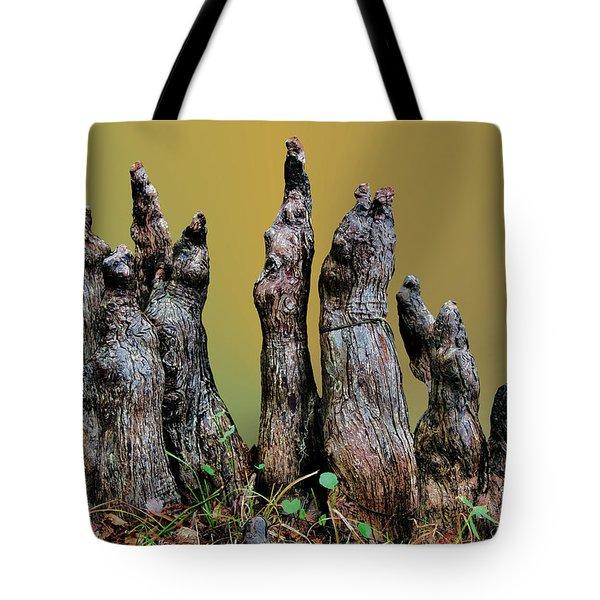 The Cypress Knees Chorus Tote Bag by Kristin Elmquist