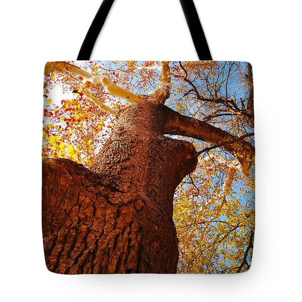 The Deer  Autumn Leaves Tree Tote Bag by Peggy  Franz