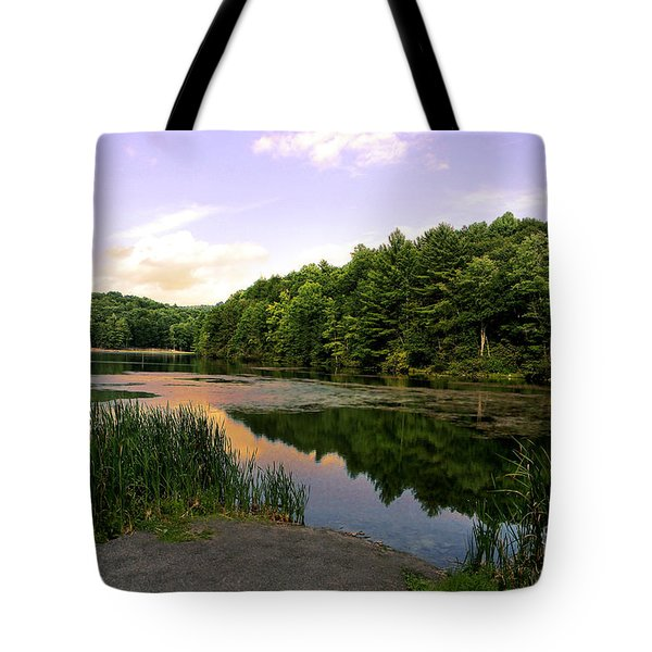 The End of the Road Tote Bag by Lj Lambert
