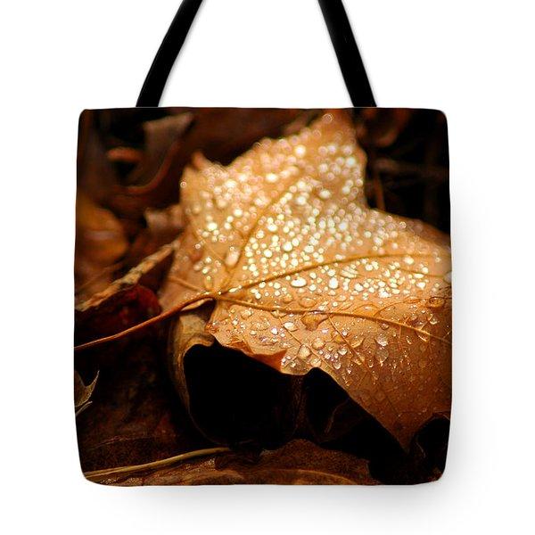 The enlightened Maple leaf Tote Bag by LeeAnn McLaneGoetz McLaneGoetzStudioLLCcom