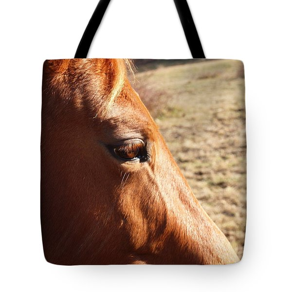 The Eye Of The Horse Tote Bag by Robert Margetts