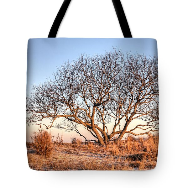 The Family Tree Tote Bag by JC Findley