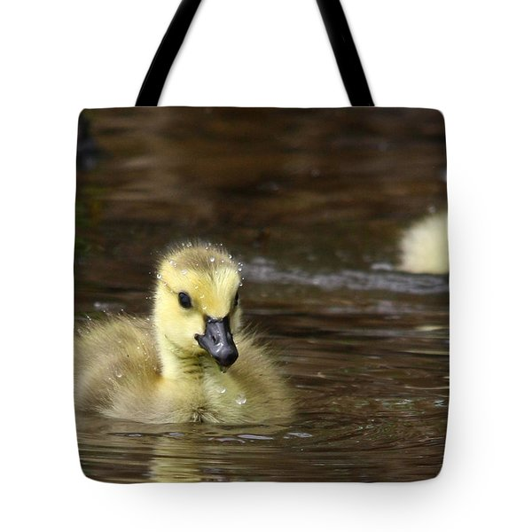 The Golden One Tote Bag by Lori Deiter