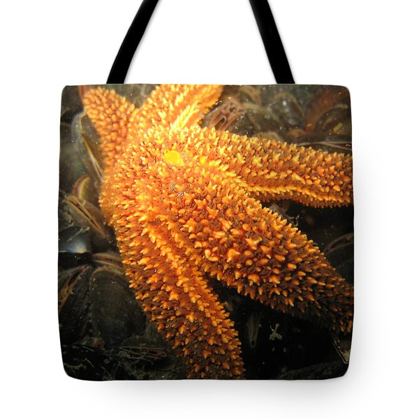 The Great Starfish Tote Bag by Paul Ward
