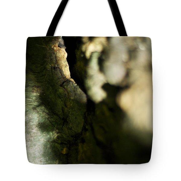 The Initiate Tote Bag by Rebecca Sherman