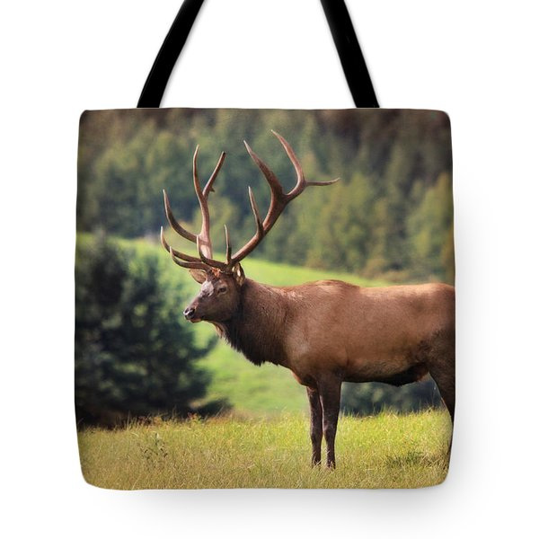 The King of Winslow Hill Tote Bag by Lori Deiter