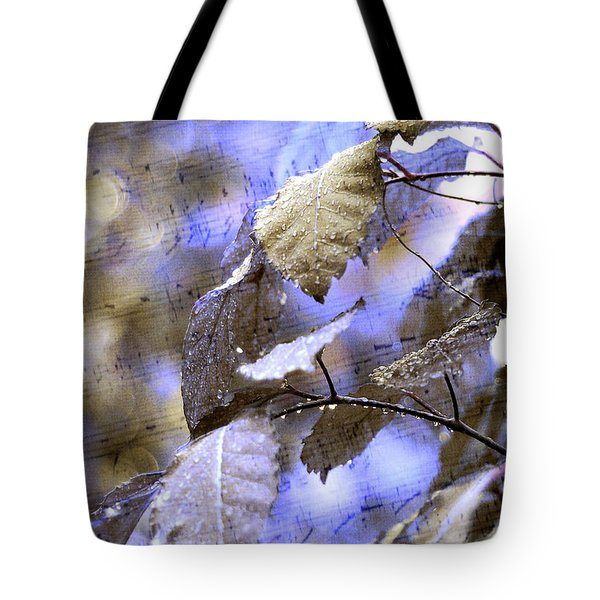 The Melody Of The Silver Rain Tote Bag by Jenny Rainbow