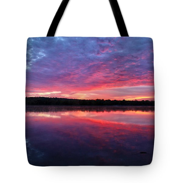 The Mystery Tote Bag by Mitch Cat