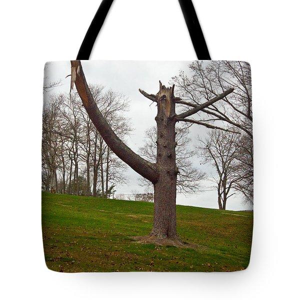 The Orator Tote Bag by Douglas Barnett