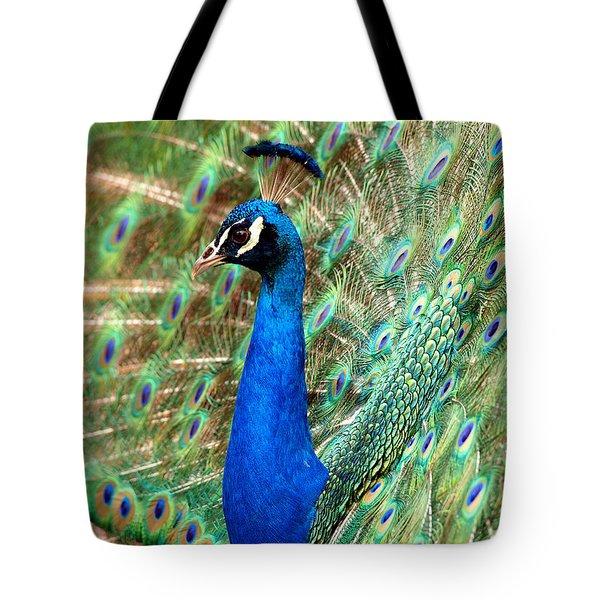 The Peacock Tote Bag by Paul Ge