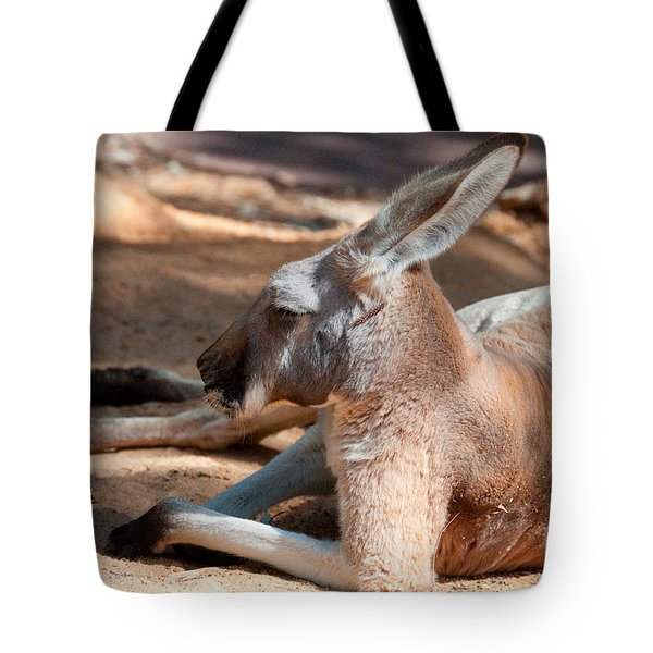 The Resting Roo Tote Bag by Rob Hawkins