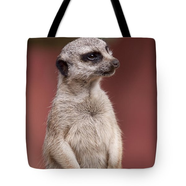 The Sentry Tote Bag by Michelle Wrighton