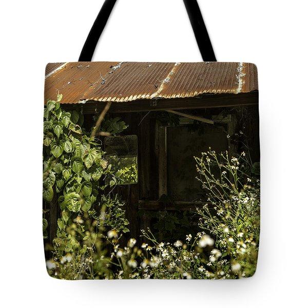The Shaving Mirror Tote Bag by Lynn Palmer