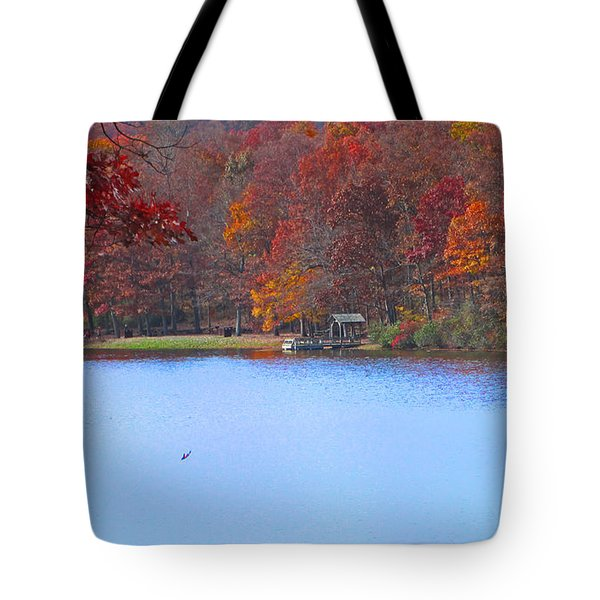 The Watershed Tote Bag by Lynn Bauer
