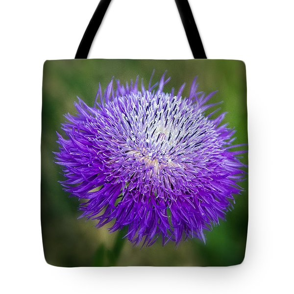 Thistle I Tote Bag by Tamyra Ayles