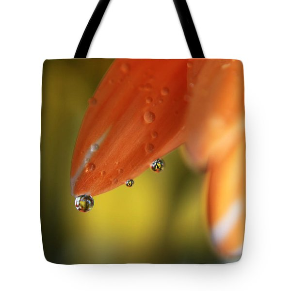 Three Friends Hangin' Out Tote Bag by Laurie Search