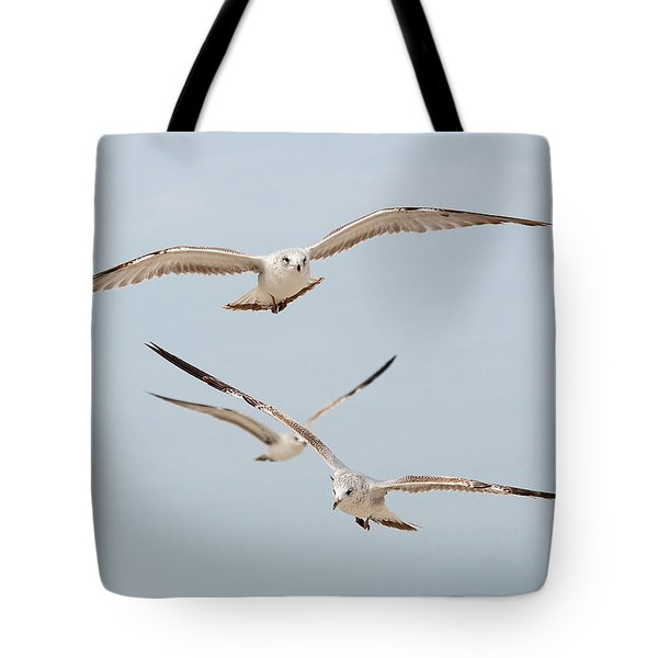Three Gulls Tote Bag by Kenneth Albin