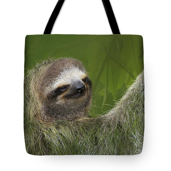 Three-toed Sloth Tote Bag by Heiko Koehrer-Wagner