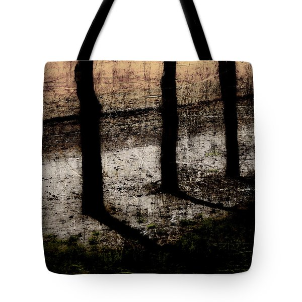 Three Tree Trunks Tote Bag by Carol Leigh
