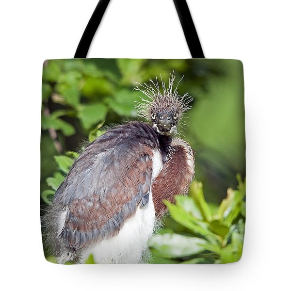 Ticked Off Tote Bag by Kenneth Albin