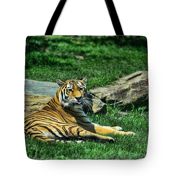 Tiger - Endangered - Lying Down - Tongue Out Tote Bag by Paul Ward