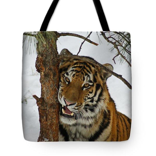 Tiger 3 Tote Bag by Ernie Echols