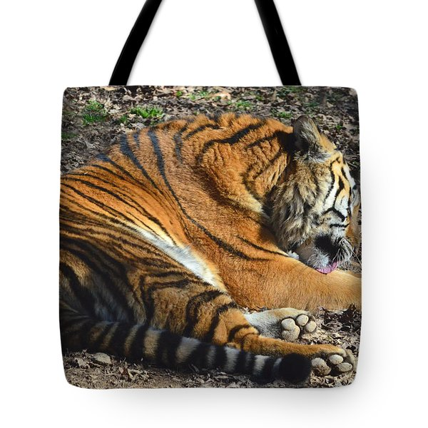 Tiger Behavior Tote Bag by Sandi OReilly