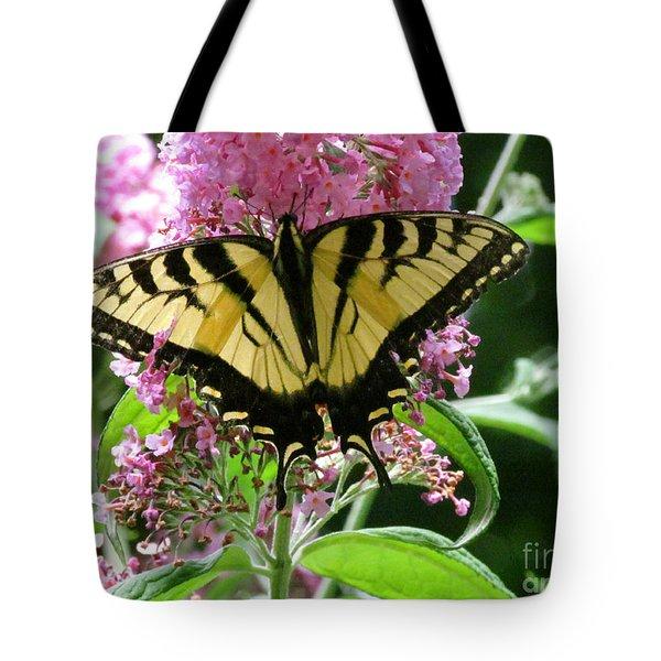 Tiger Swallowtail Butterfly Tote Bag by Randi Shenkman