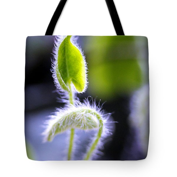 Tiny New Leaves Tote Bag by Judi Bagwell