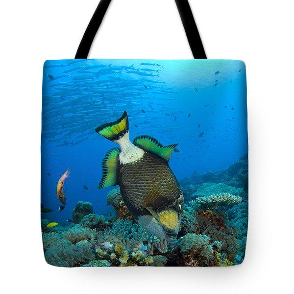 Titan Triggerfish Picking At Coral Tote Bag by Steve Jones