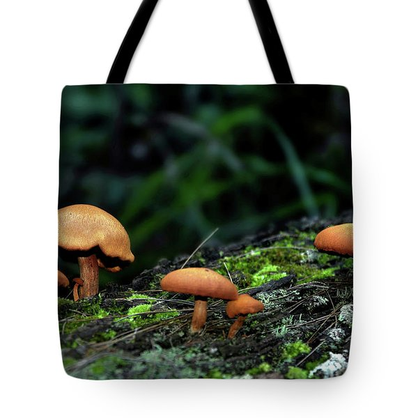 Toadstool Village Tote Bag by Kaye Menner