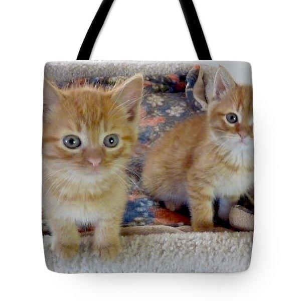 Too Cute Tote Bag by Rhonda Chase