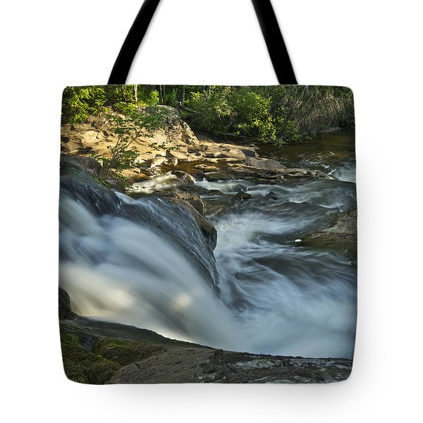 Top Of The Dog 4191 Tote Bag by Michael Peychich