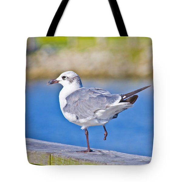 Topsail Seagull Tote Bag by Betsy C  Knapp
