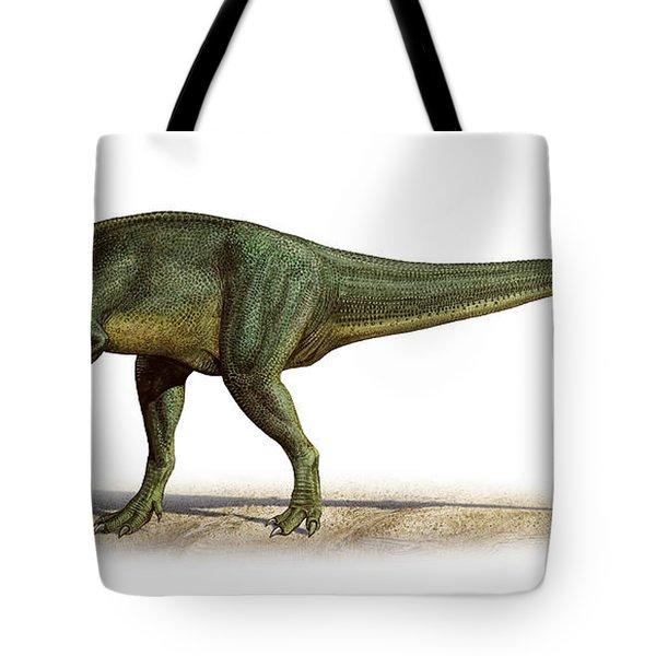 Torvosaurus Tanneri, A Prehistoric Era Tote Bag by Sergey Krasovskiy