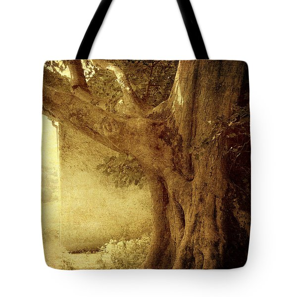 Touch Of History. Wicklow. Ireland Tote Bag by Jenny Rainbow