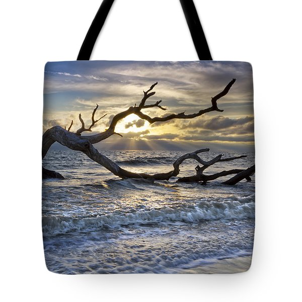 Treasures Of The Sea Tote Bag by Debra and Dave Vanderlaan
