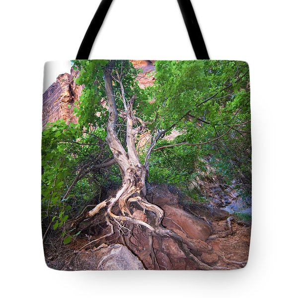 Tree Along The Trail Tote Bag by Bob and Nancy Kendrick