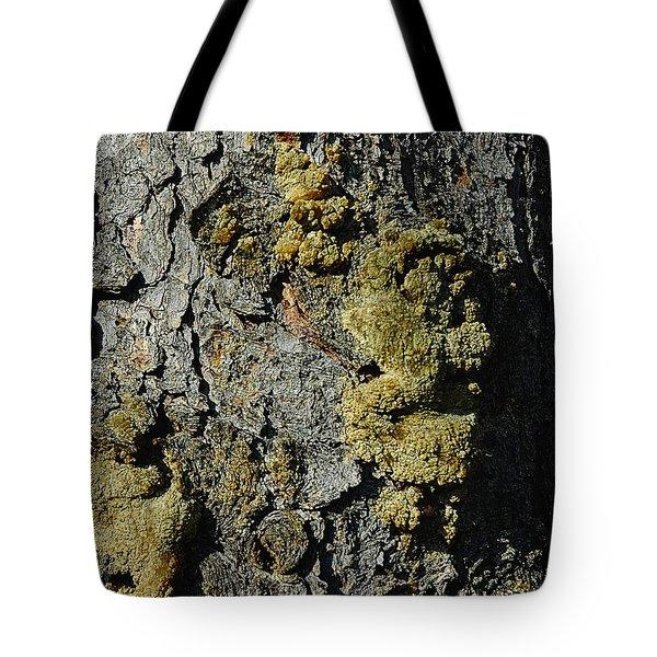 Tree People Tote Bag by LeeAnn McLaneGoetz McLaneGoetzStudioLLCcom