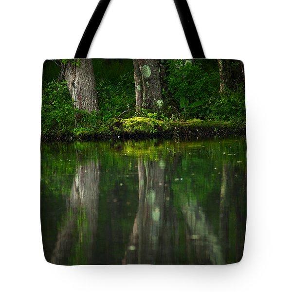Tree Trunks Tote Bag by Karol Livote