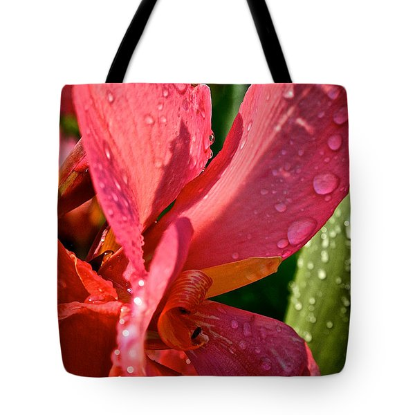 Tropical Rose Canna Lily Tote Bag by Susan Herber