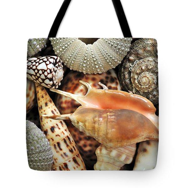 Tropical Shells Tote Bag by Kaye Menner