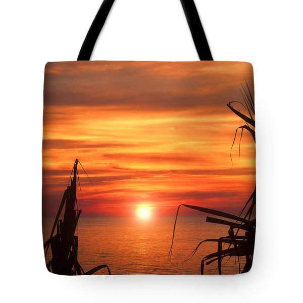 Tropical Sunset V6  Tote Bag by Douglas Barnard