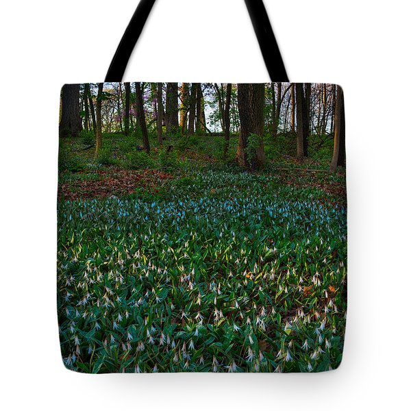 Trout Lilies on Forest Floor Tote Bag by Steve Gadomski
