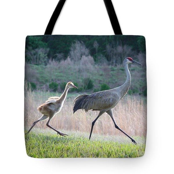 Trying To Keep Up Tote Bag by Carol Groenen