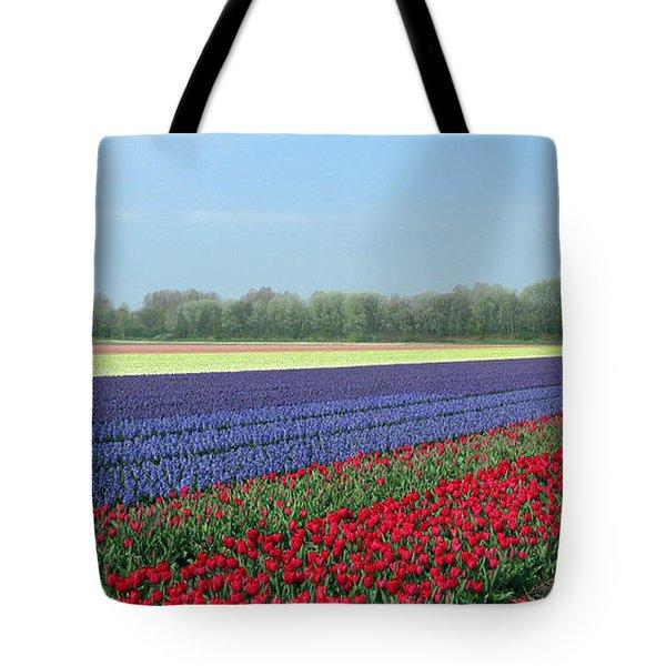 Tulip And Hyacinth Fields In Holland. Panorama Tote Bag by Ausra Huntington nee Paulauskaite