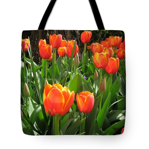 Tulip Time Tote Bag by Margaret Hodgson