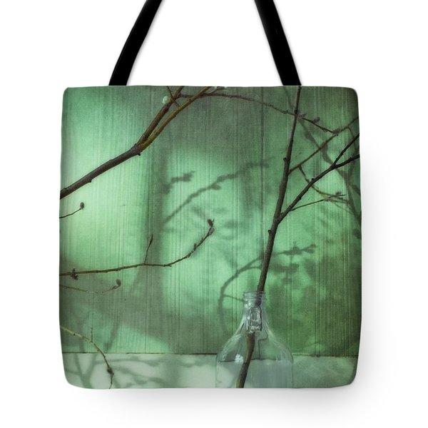Twigs Shadows And An Empty Beer Jug Tote Bag by Priska Wettstein