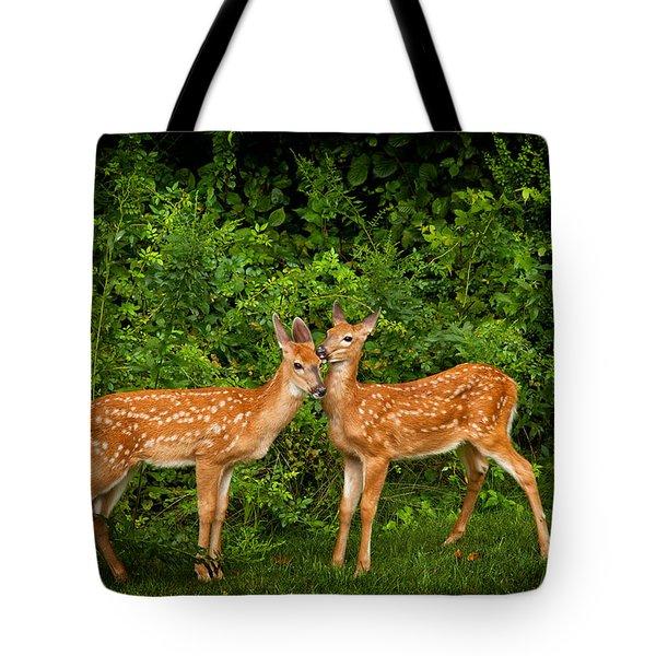 Twins Tote Bag by Karol Livote