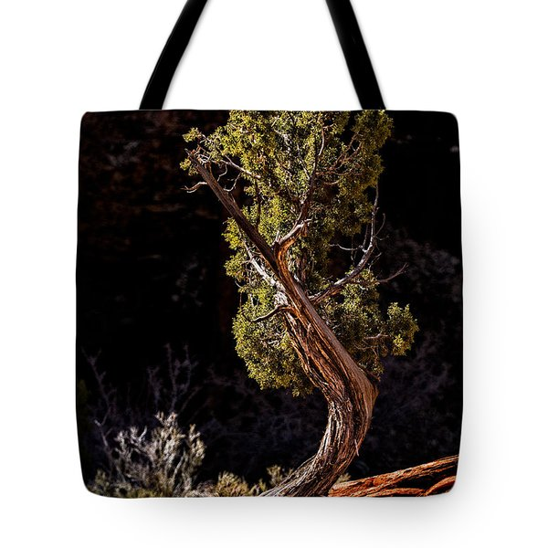 Twisted Reach Tote Bag by Christopher Holmes